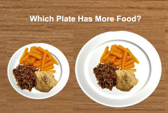 Image result for dinner plate sizes
